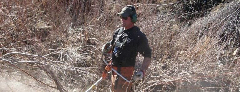 Backcountry Noxious Weed Management