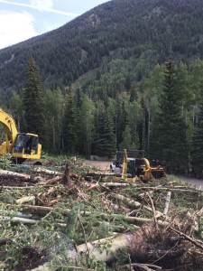 Aspen, Colorado wood waste reduction project